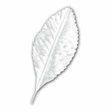 Single White Artificial Leaves