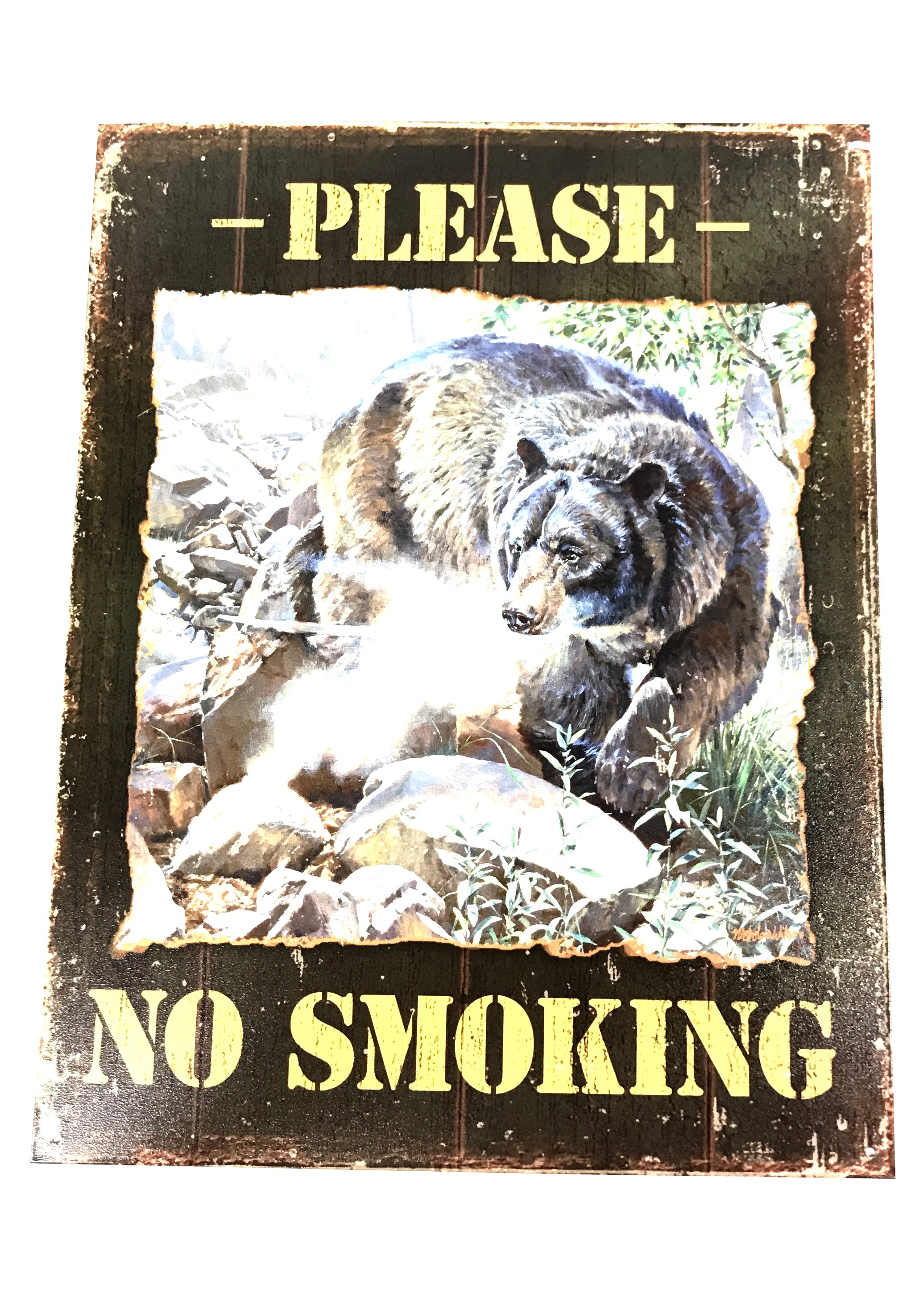 (8271) Please No Smoking 12x16 Sign