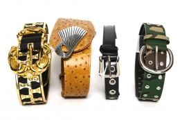 Asst Fashion Belts