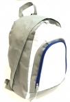 Daytripper Backpack - Royal