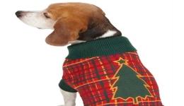 Holly Days Tree Sweater