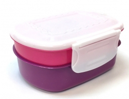 2-in-1 Plastic Lunch Box